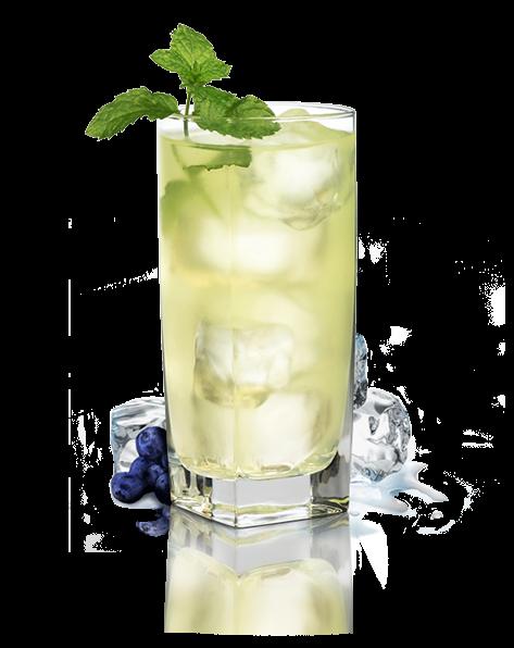 COCTELESSIN ALCOHOL